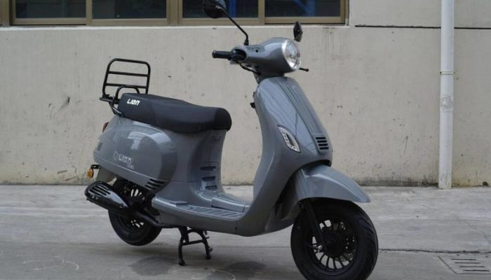 lion-scooter